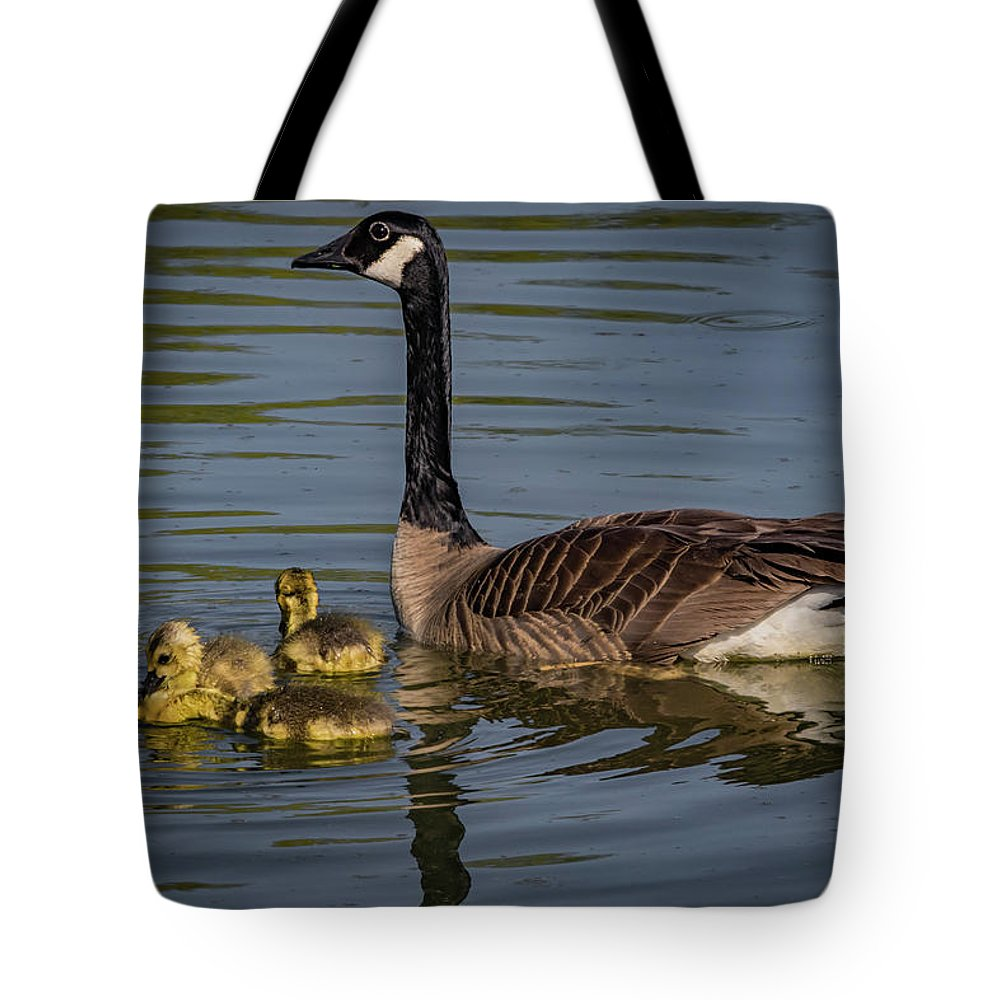 Branta Canadensis Tote Bag featuring the photograph Mother Goose by Ray Congrove