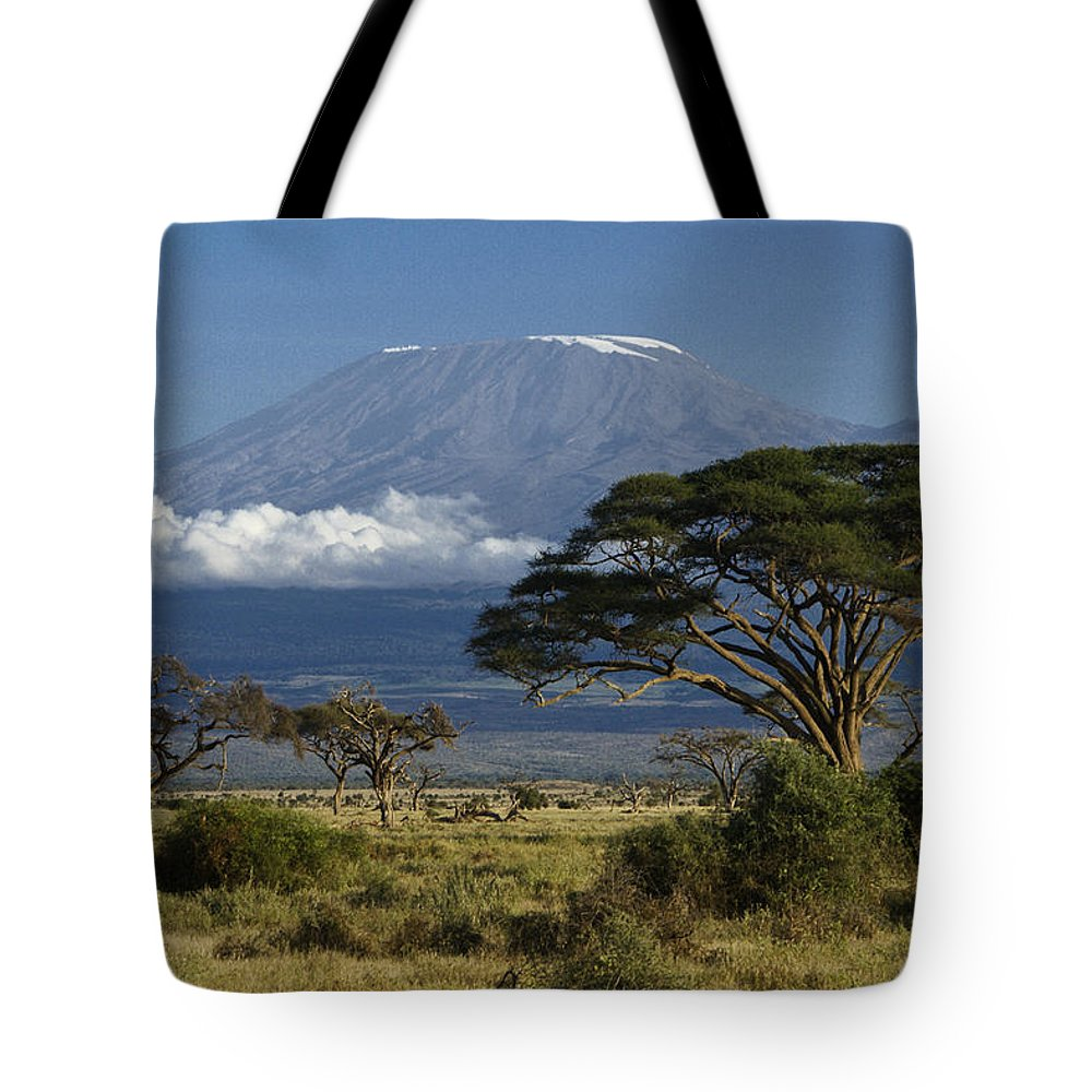 Africa Tote Bag featuring the photograph Mount Kilimanjaro by Michele Burgess