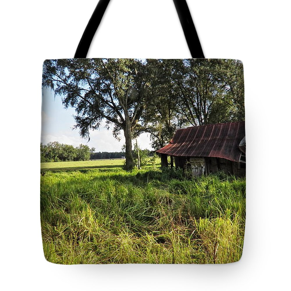 Landscape Tote Bag featuring the photograph Newberry Fl Farmhouse by Roger Epps