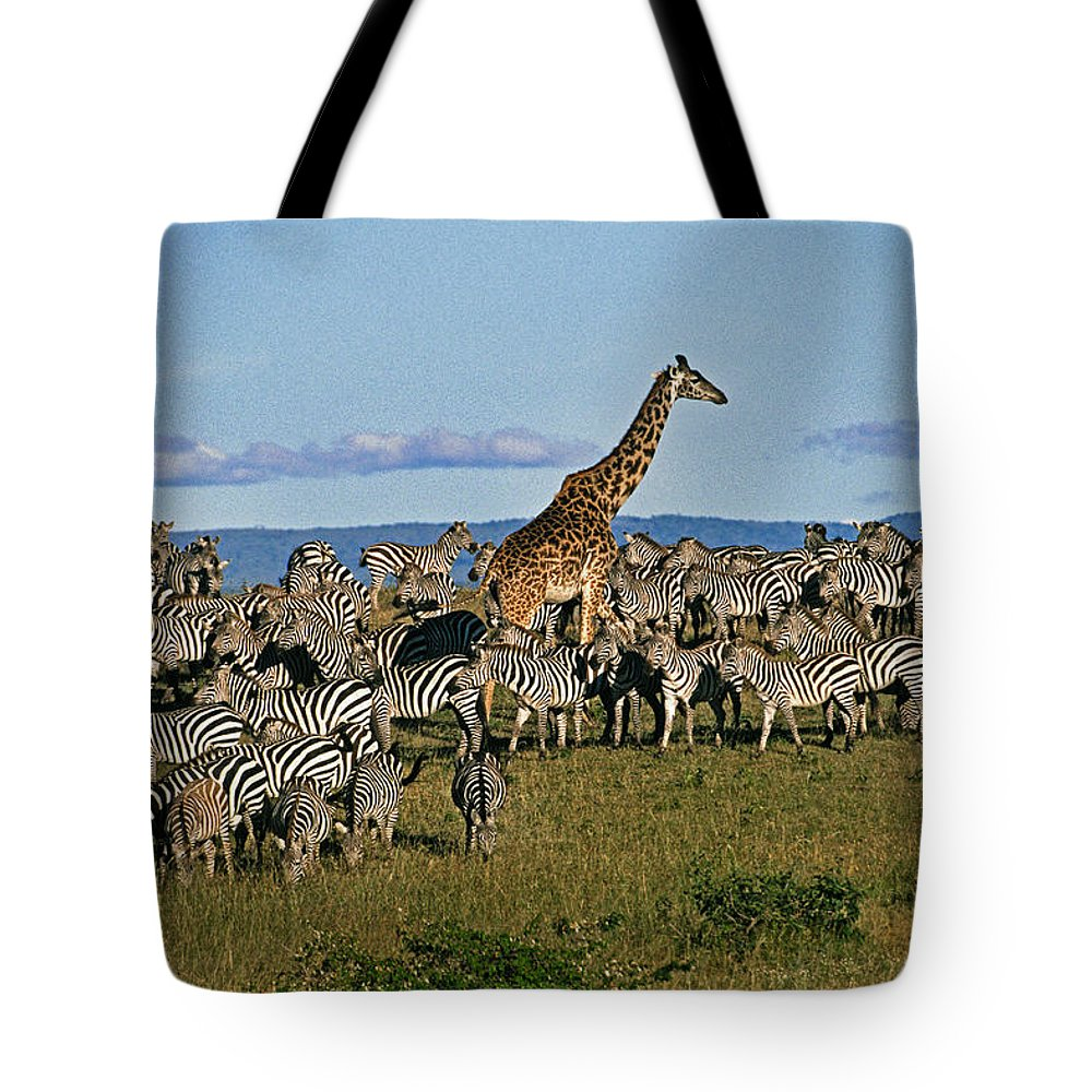 Africa Tote Bag featuring the photograph Odd Man Out by Michele Burgess