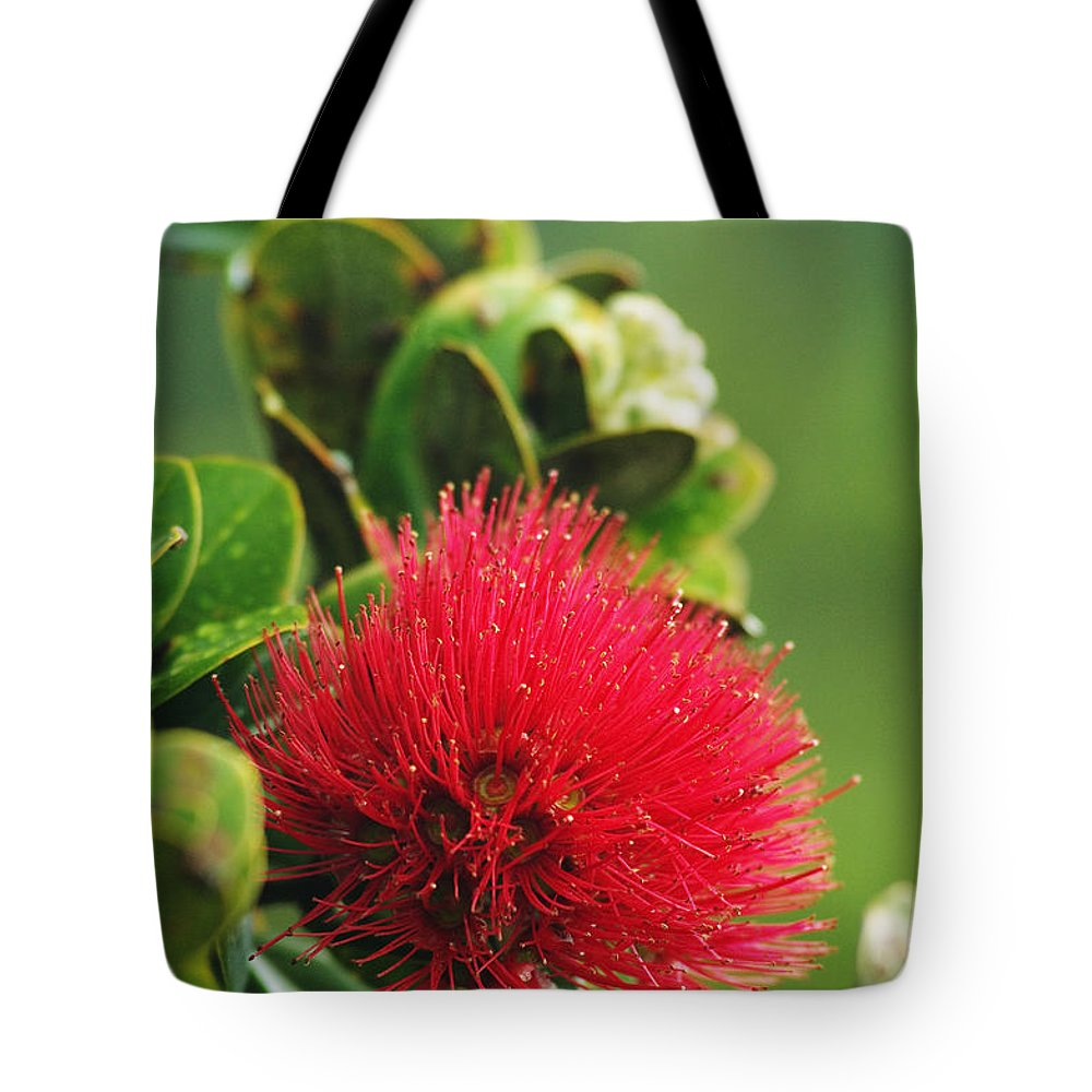 Bloom Tote Bag featuring the photograph Ohia Lehua by Greg Vaughn - Printscapes