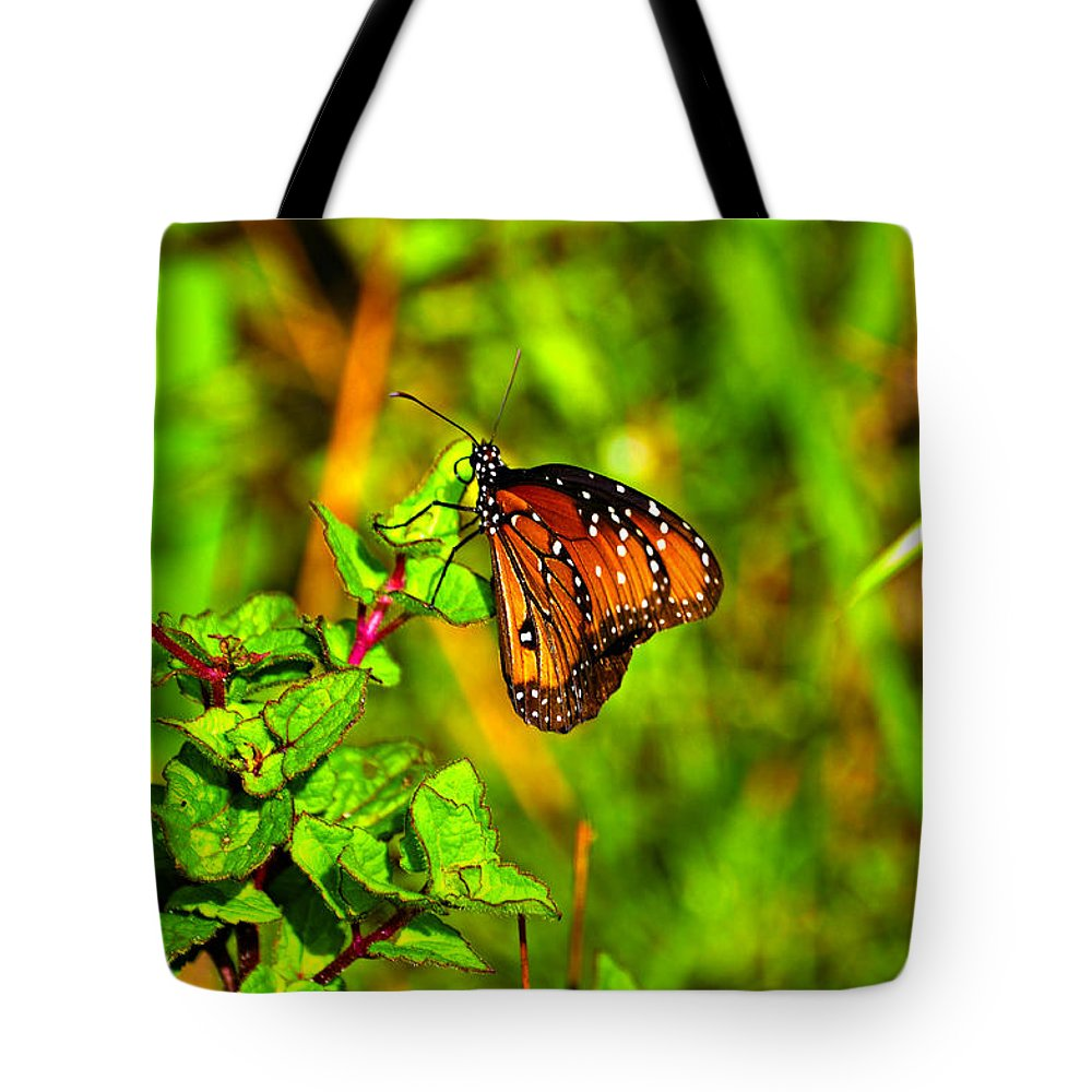 Butterfly Tote Bag featuring the photograph Orange Butterfly Too by Randy Aveille