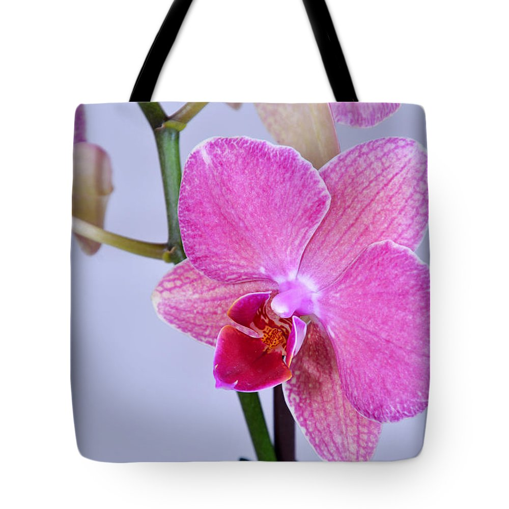 Flowers 2016 Tote Bag featuring the photograph Orchards by Ti Oakva
