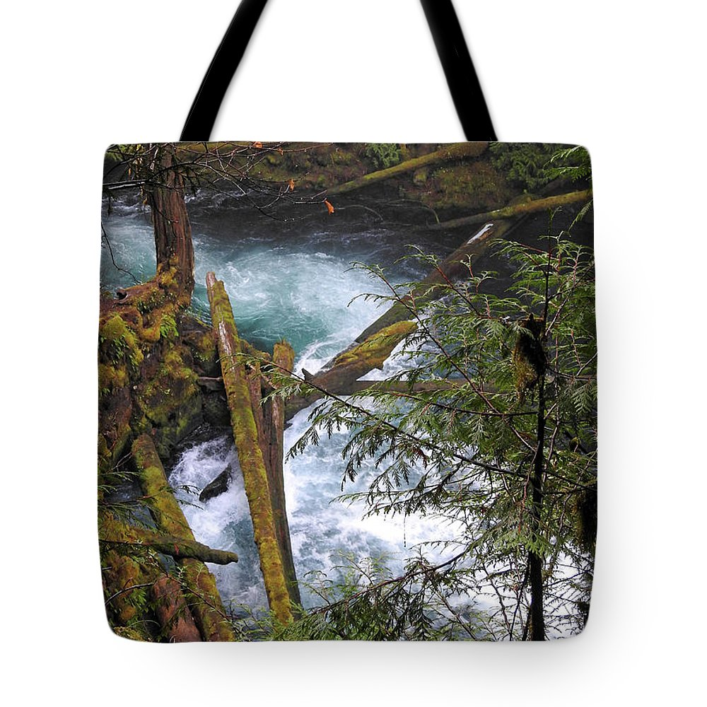 Stream Tote Bag featuring the photograph Oregon Stream by Lindy Pollard
