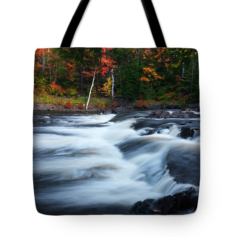 River Tote Bag featuring the photograph Oxtongue River Ontario Autumn Scenery by Oleksiy Maksymenko