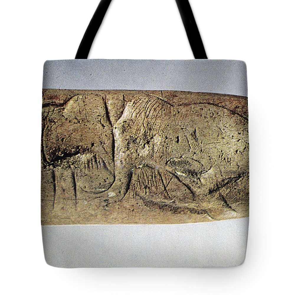 20000 Tote Bag featuring the photograph Paleolithic Tool by Granger