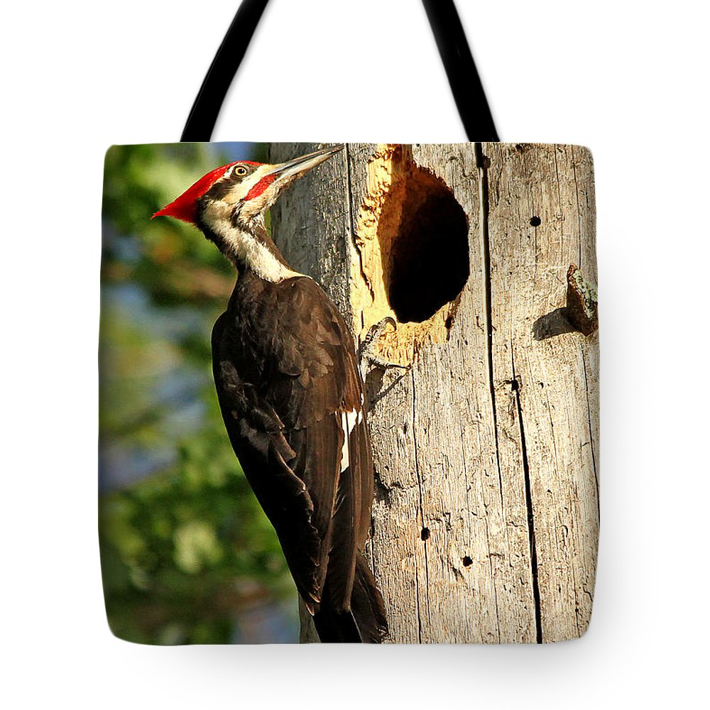 Woodpecker Tote Bag featuring the photograph Pileated #26 by James F Towne