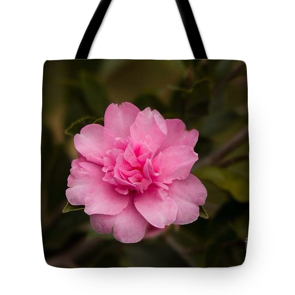 Pink Camellia Tote Bag featuring the photograph Pink Camellia by Marta Robin Gaughen