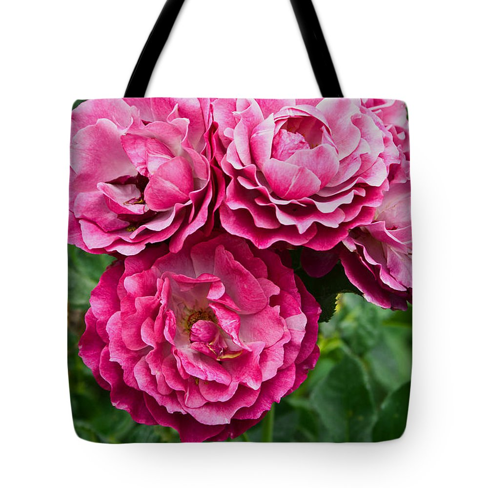 Tote Bag featuring the photograph Pink Roses by James Gay