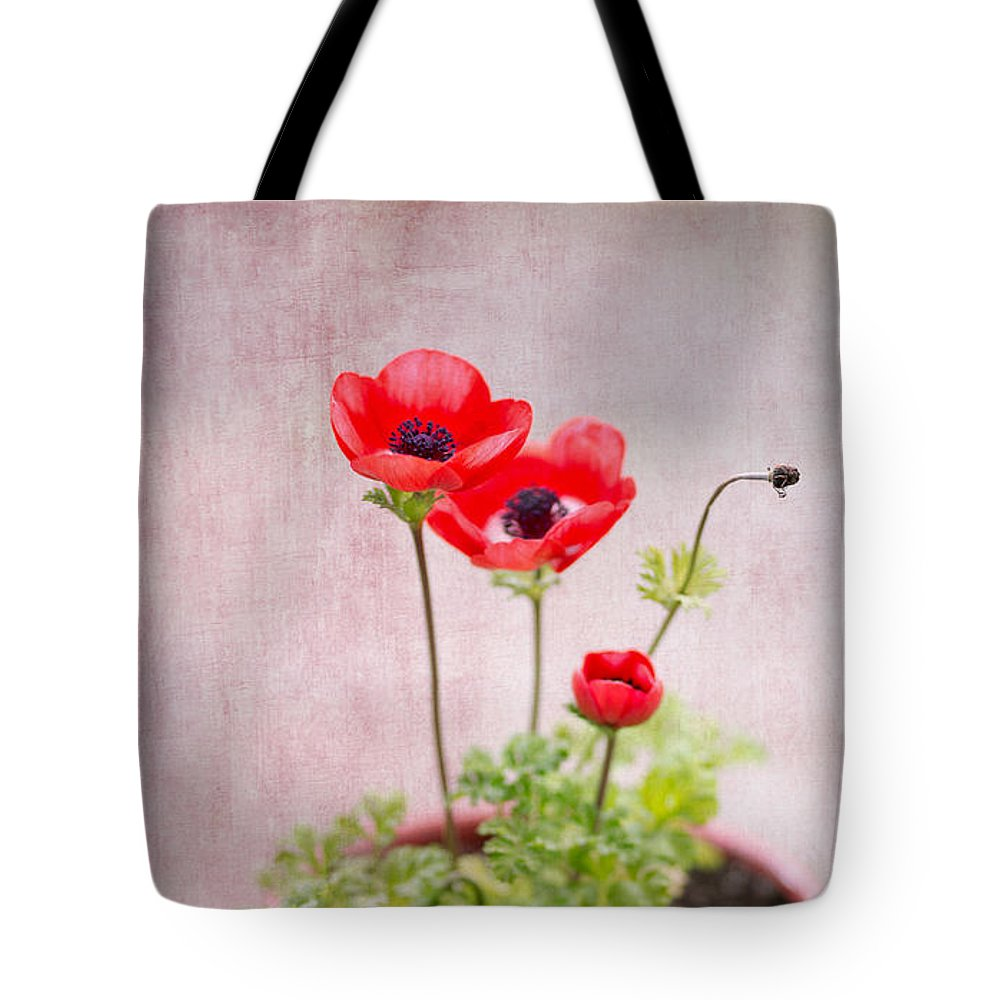 Anemone Tote Bag featuring the photograph Potted by Rebecca Cozart