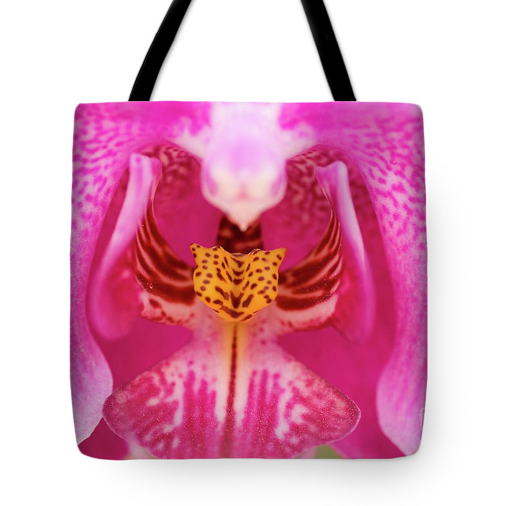 Psi Tote Bag featuring the photograph Purple Orchid by Ofer Zilberstein