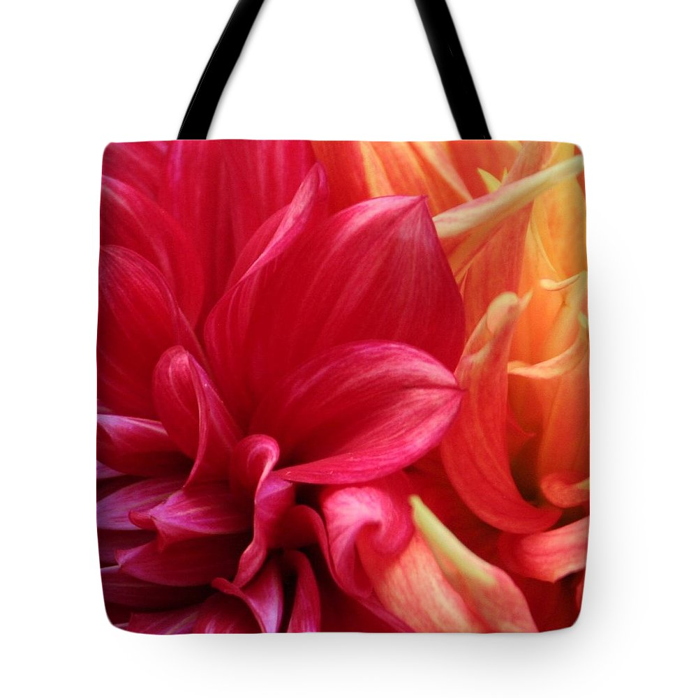 Flower Tote Bag featuring the photograph Radiant by Matthew Wilson
