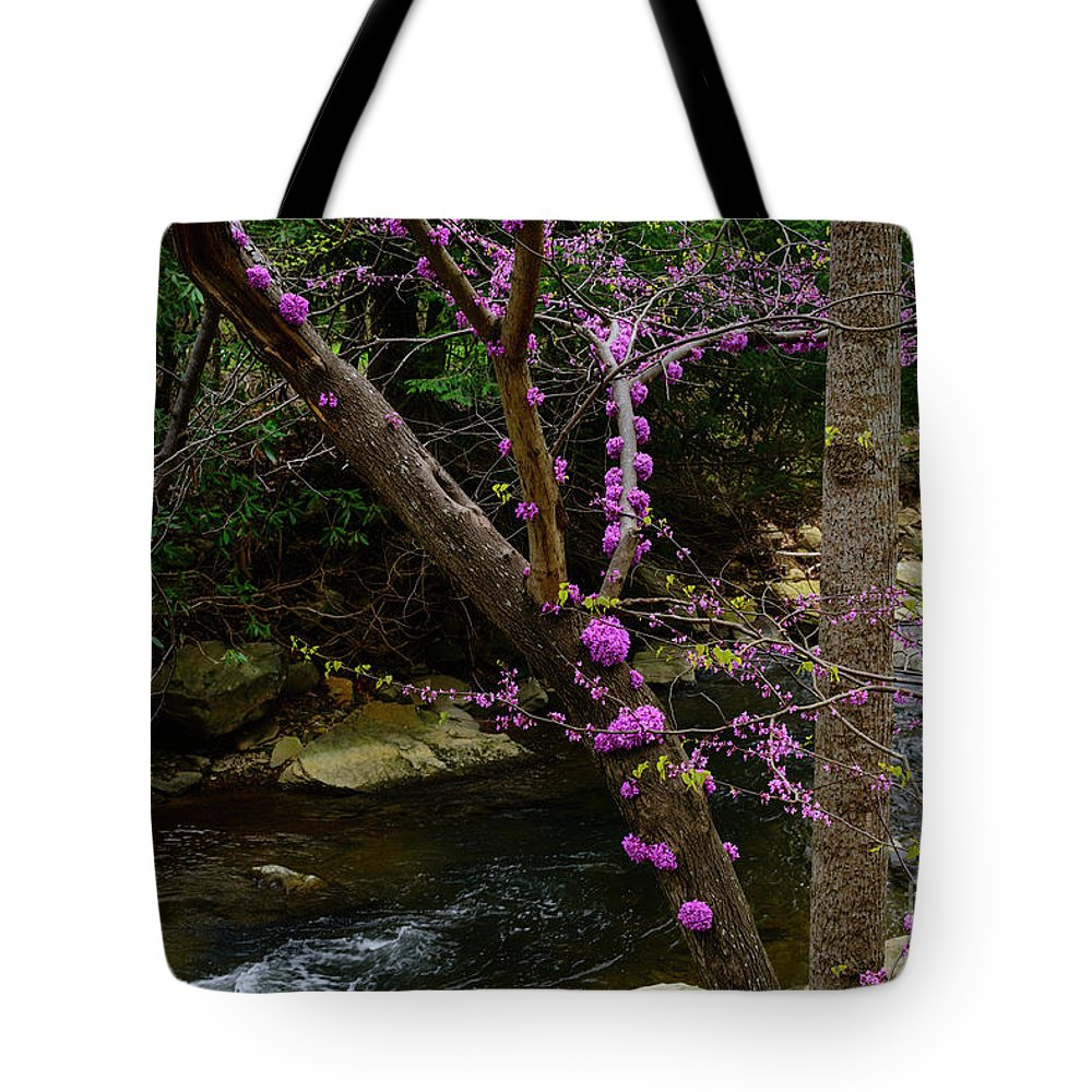 Spring Tote Bag featuring the photograph Redbud And River by Thomas R Fletcher