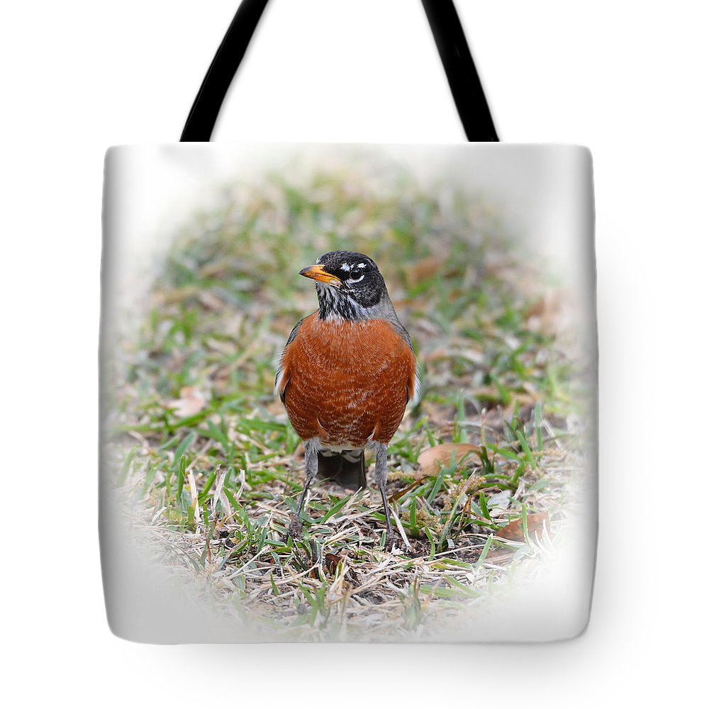 Bird Tote Bag featuring the photograph Robin by Lindy Pollard