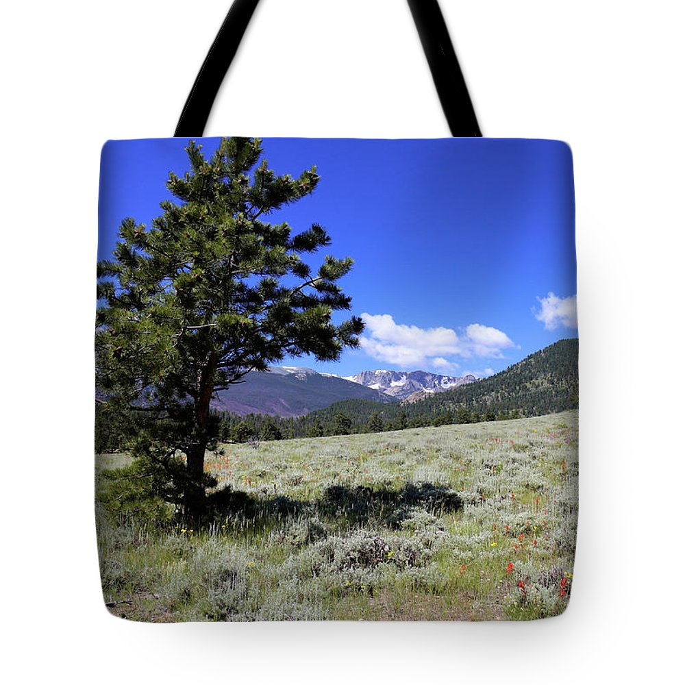 Mountain Tote Bag featuring the photograph Rocky Mountain Foothills by Scott Kingery