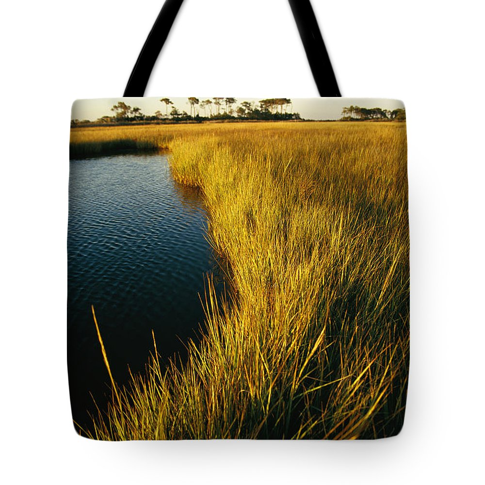 North America Tote Bag featuring the photograph Salt Marsh, Assateague Island, Virginia by Skip Brown