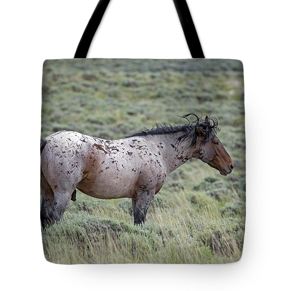 Mustangs Tote Bag featuring the photograph Shake Off by Eric Nelson