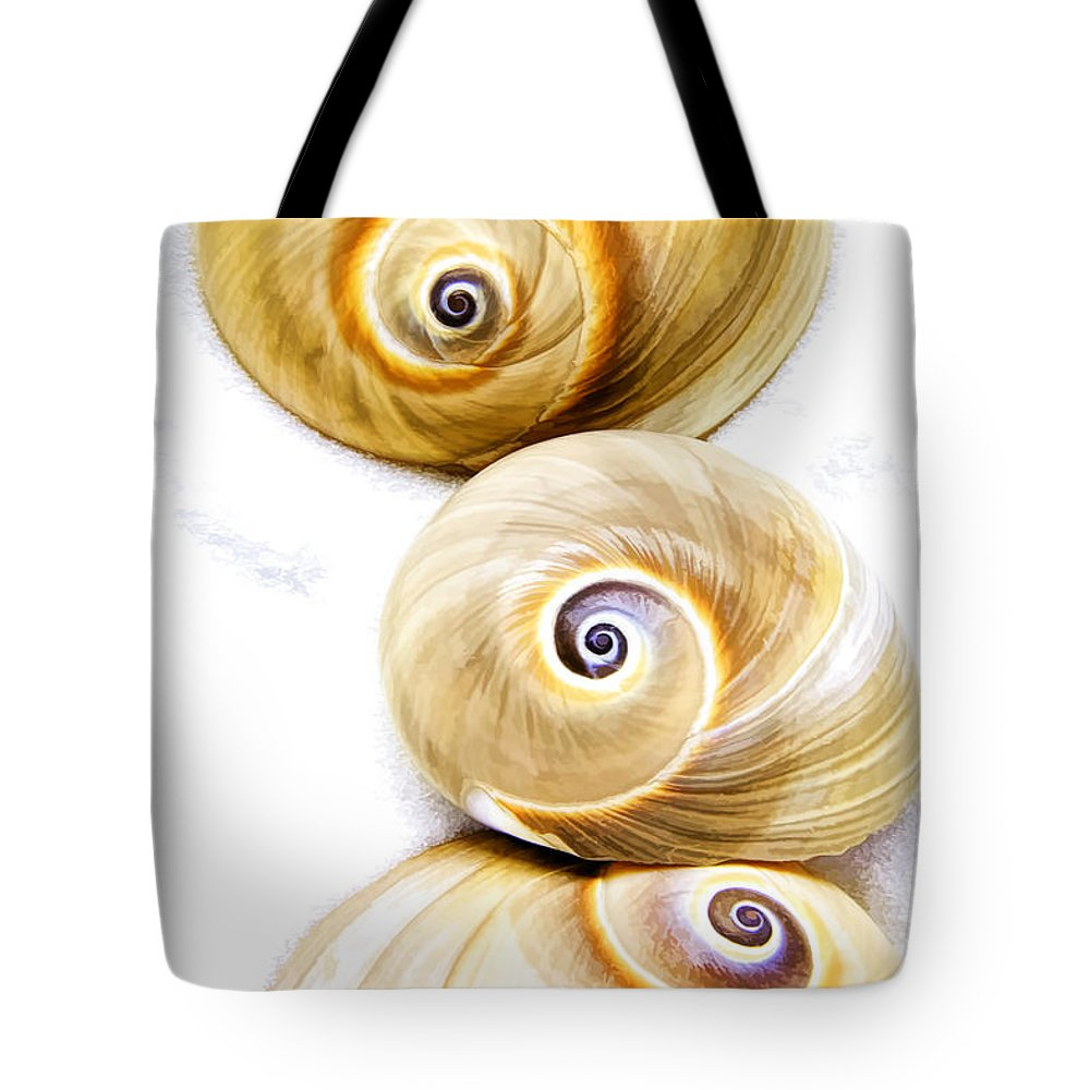 Spiral Shell Tote Bag
