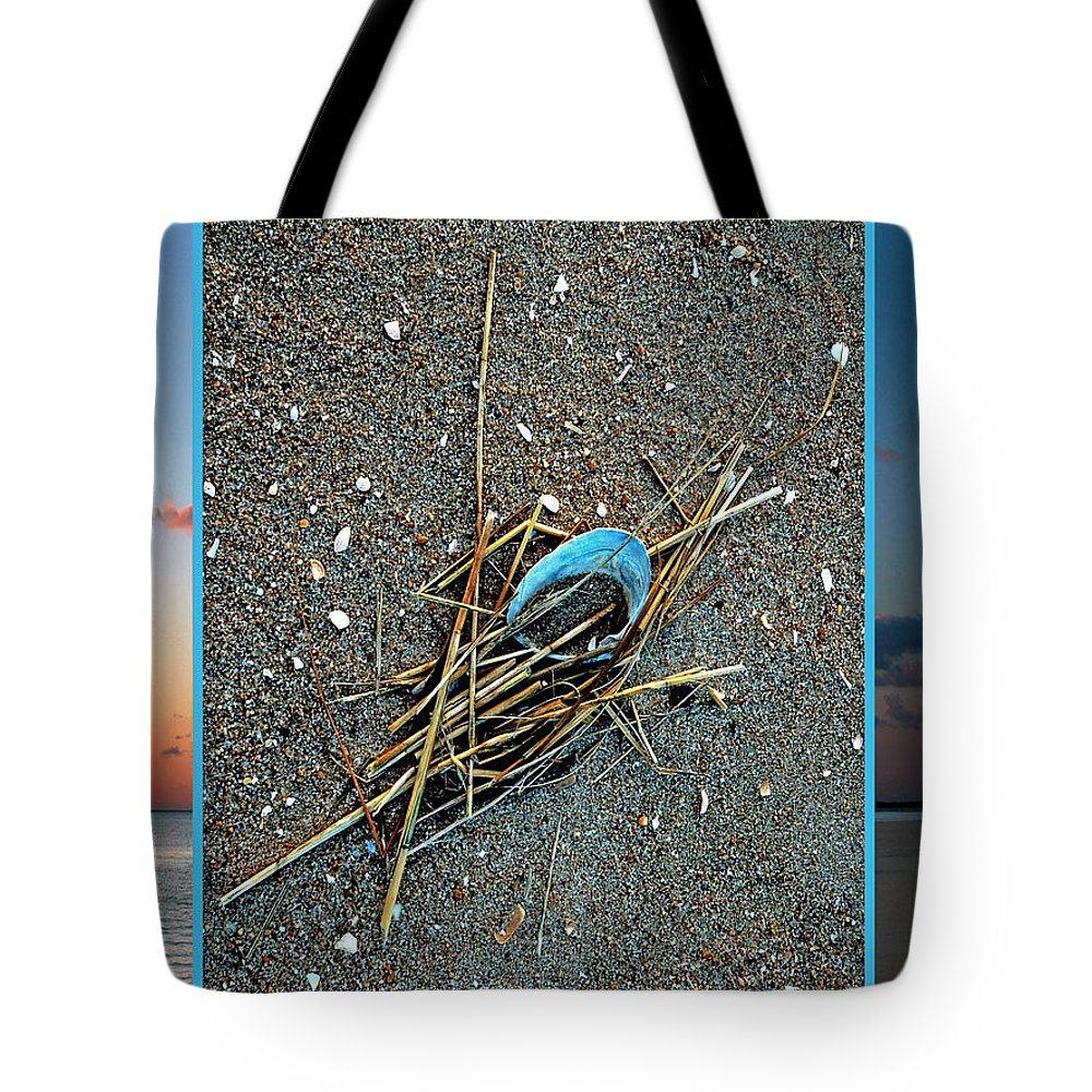 Bradley Tote Bag featuring the photograph Shore Find by Rich Despins