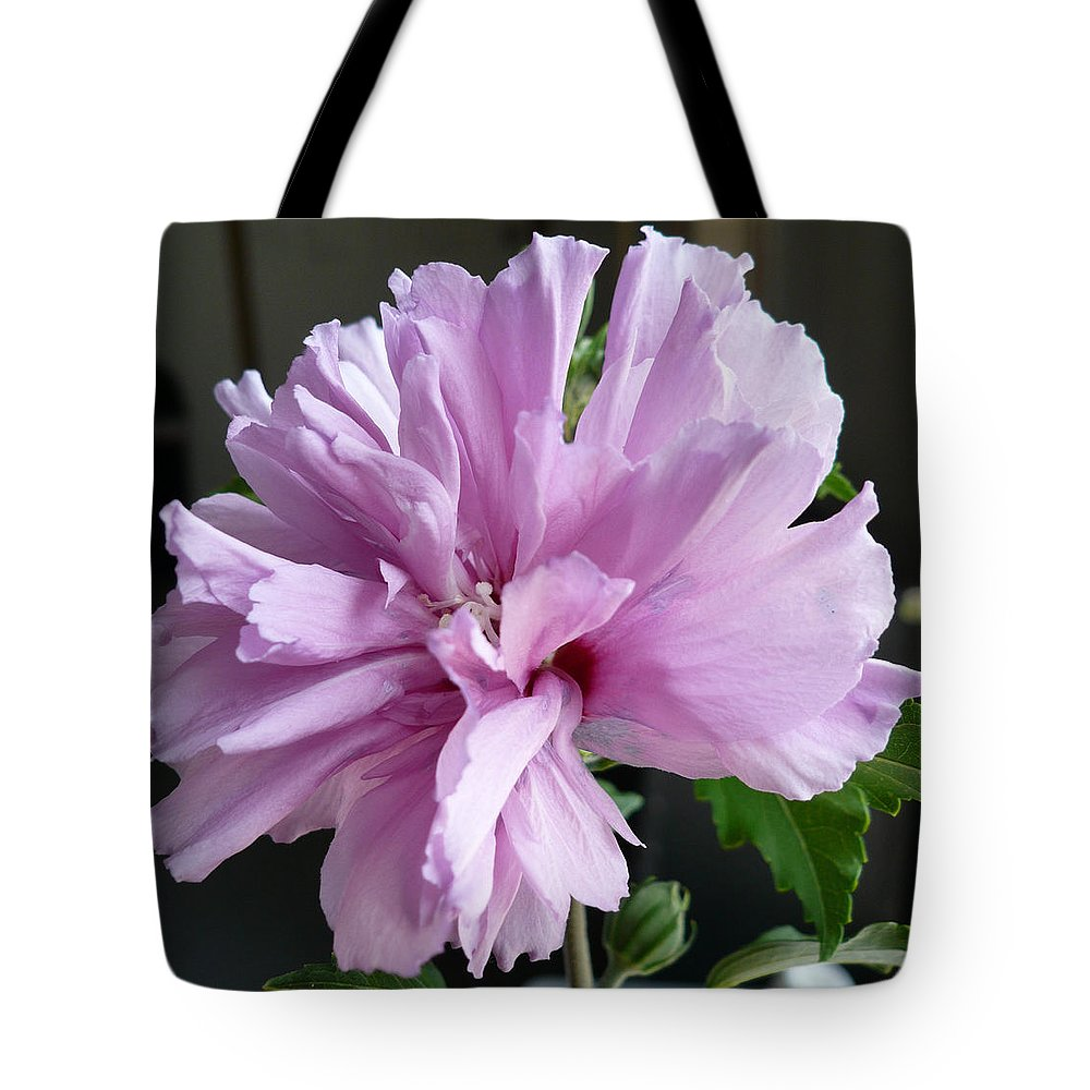 Phoyography.hibiscus Flower Floral Bloom Bush Pink Tote Bag featuring the photograph So Pink by Karin Dawn Kelshall- Best