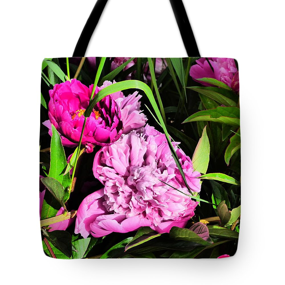 Paul Stanner Tote Bag featuring the photograph Sounds Of Summer by Paul Stanner