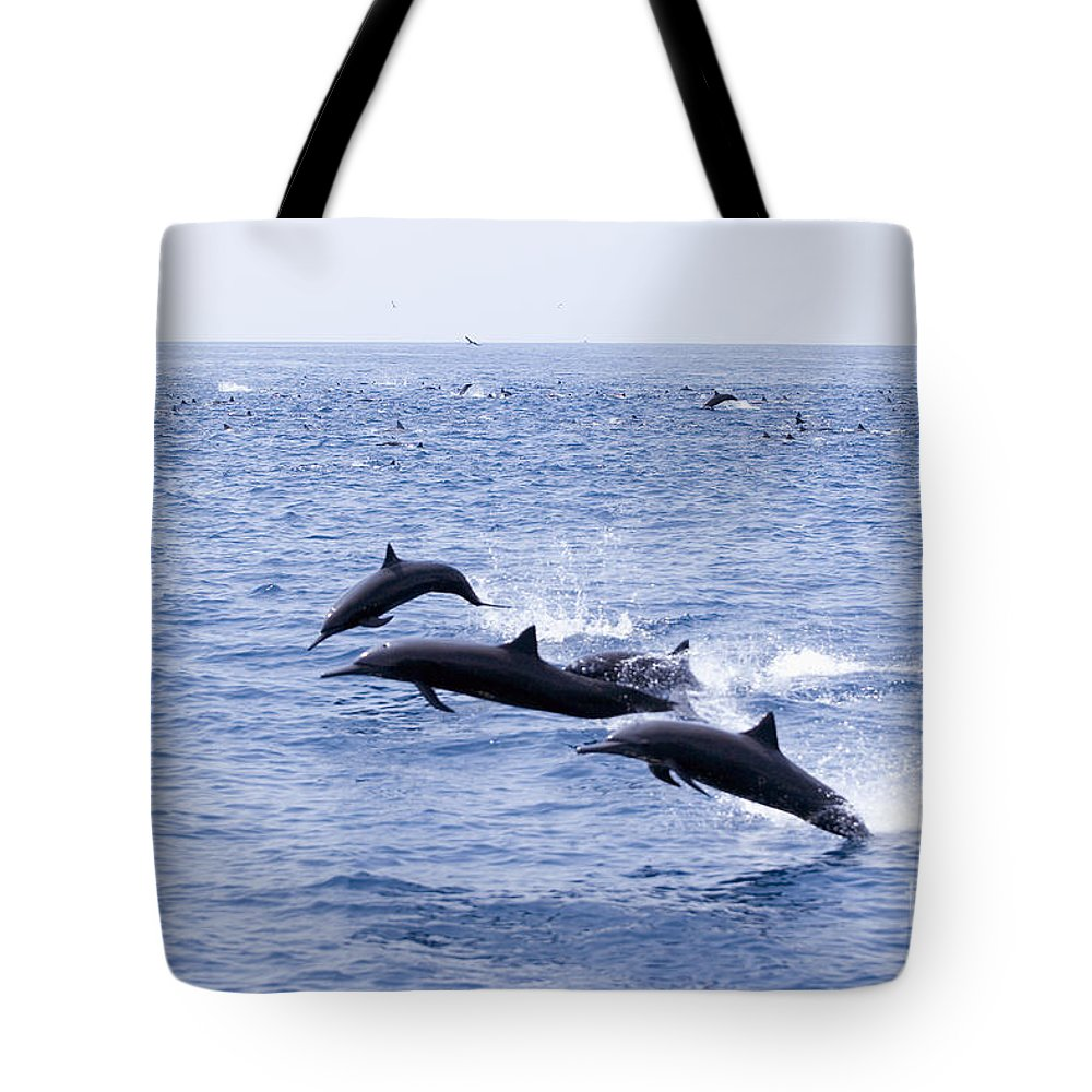 Amaze Tote Bag featuring the photograph Spinner Dolphins by Rick Gaffney - Printscapes