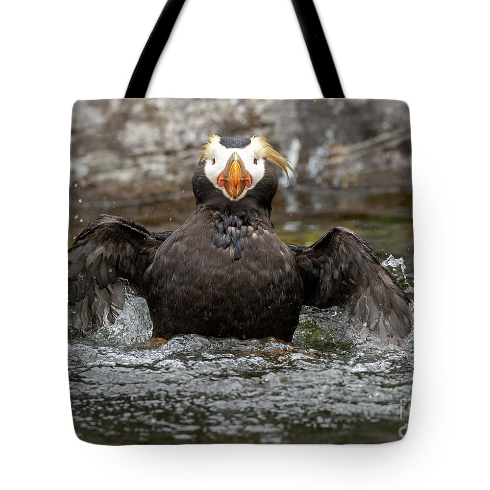 Auklet Photographs Tote Bags