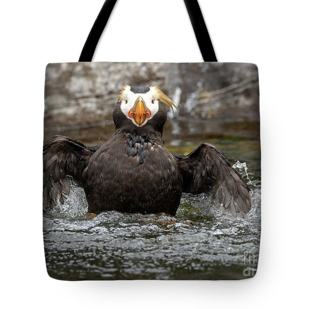 Auklets Tote Bags