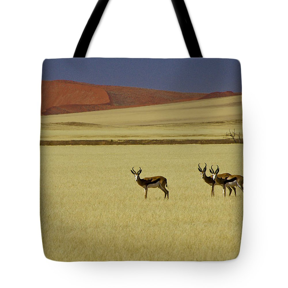 Africa Tote Bag featuring the photograph Springbok At Sossusvlei by Michele Burgess