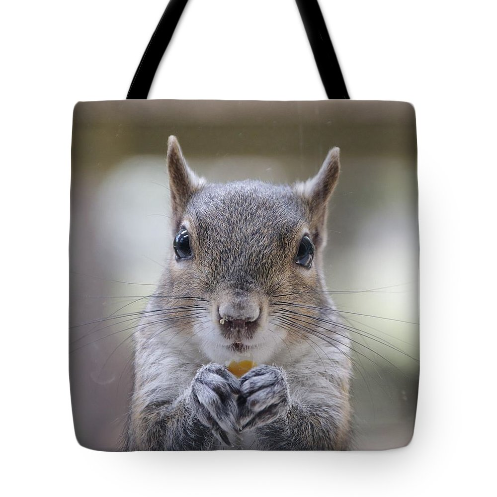 Cheeky Squirrel Eating Corn Florida Cute Tote Bag featuring the photograph Squirrel by Geoff Poole