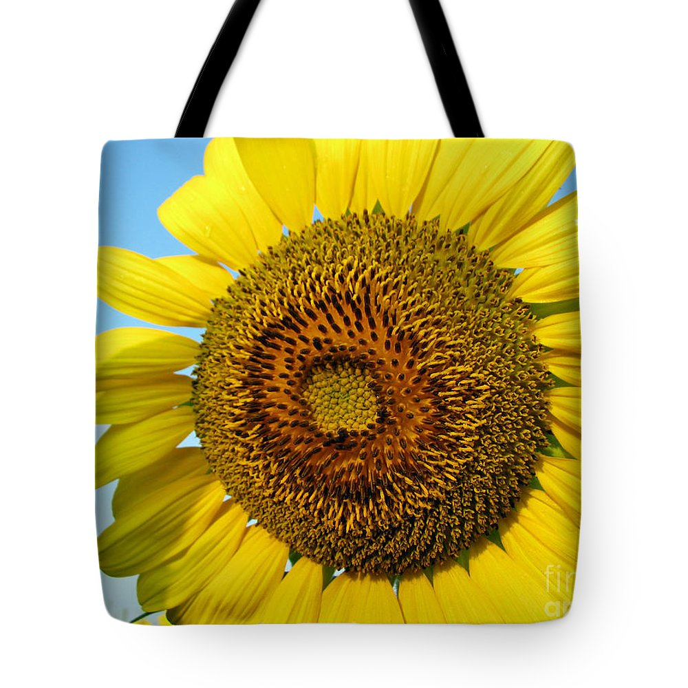 Sunflower Tote Bag featuring the photograph Sunflower Series by Amanda Barcon