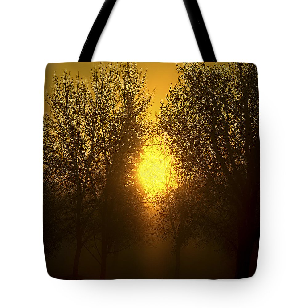 Sunrise Tote Bag featuring the photograph Sunrise Trees Fog by Donald Erickson