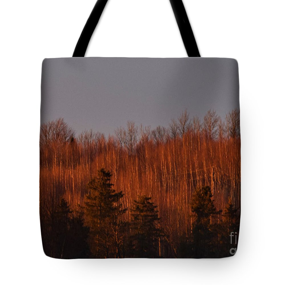 Sunset Tote Bag featuring the photograph Sunset Glow by William Tasker