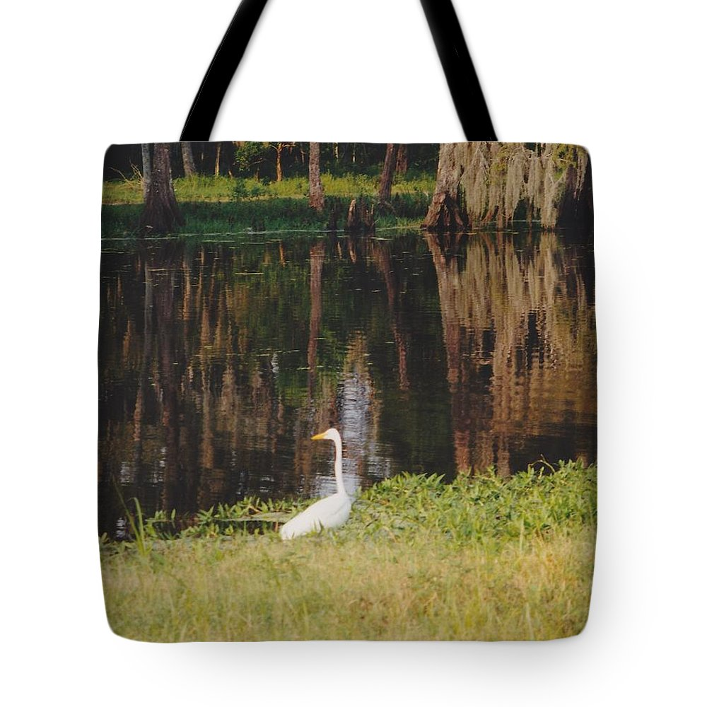 Landscape Tote Bag featuring the photograph Swamp Bird by Michelle Powell