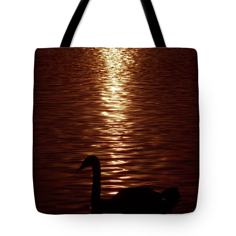Whooper Swan Tote Bag featuring the photograph Swan Silhouette by Alex England