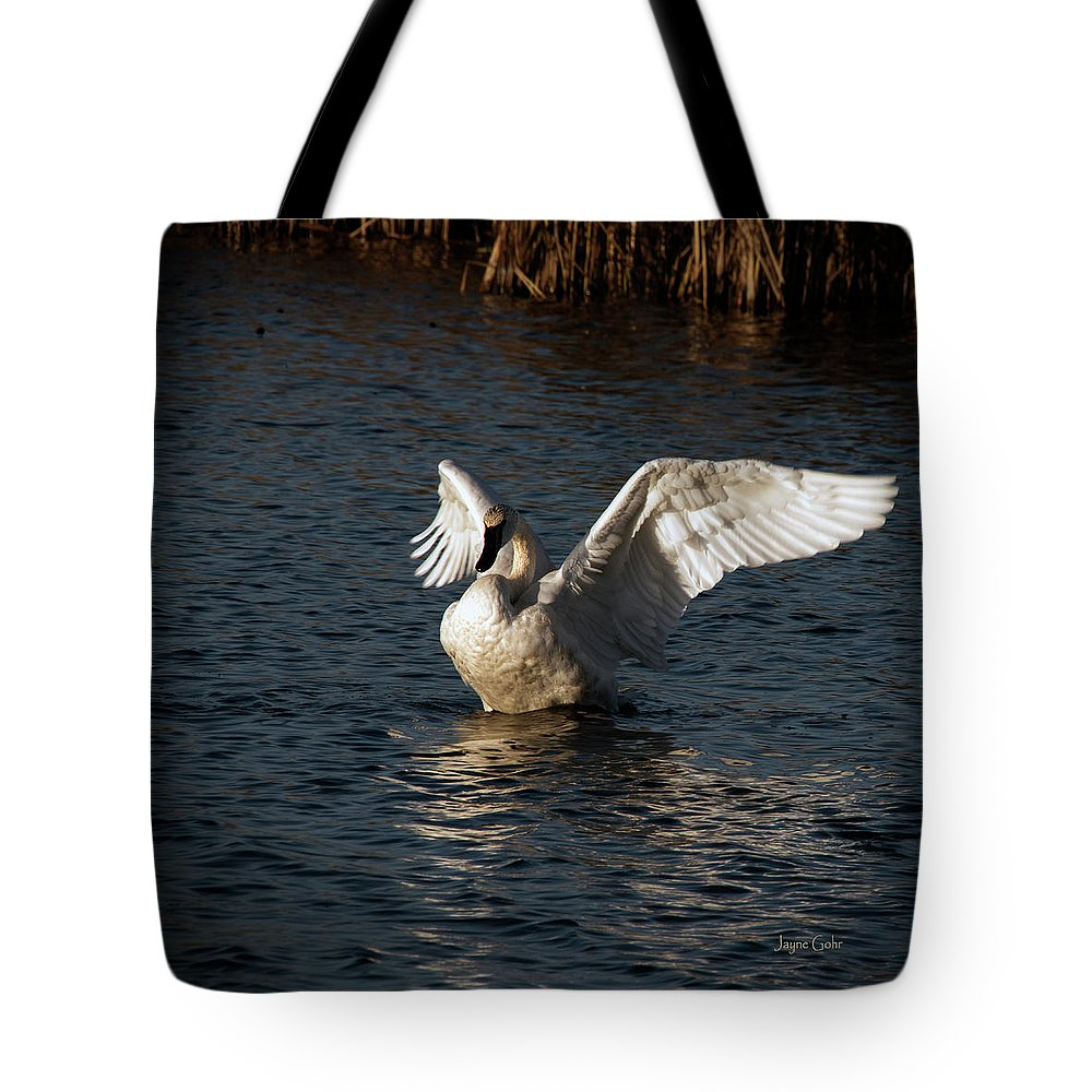 Swan Tote Bag featuring the photograph Uplifting Innocence by Jayne Gohr