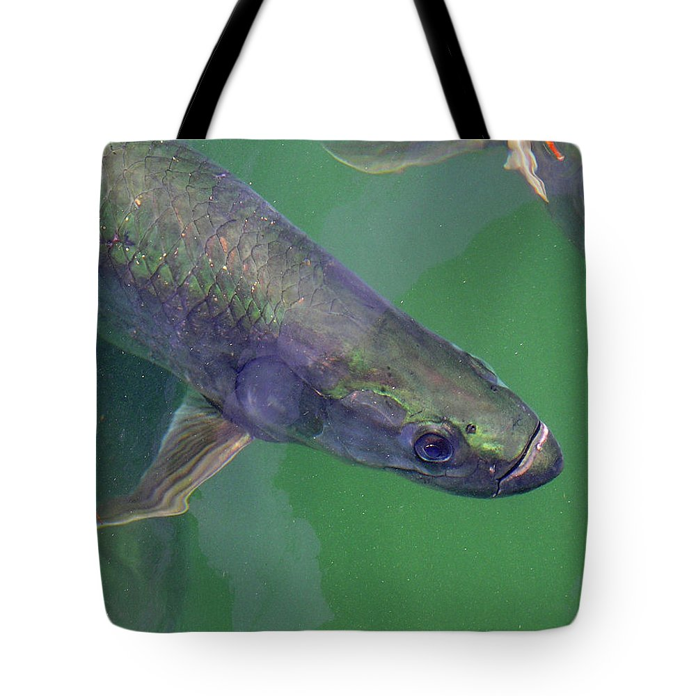 Charles Tote Bag featuring the photograph Tarpon by Charles Harden