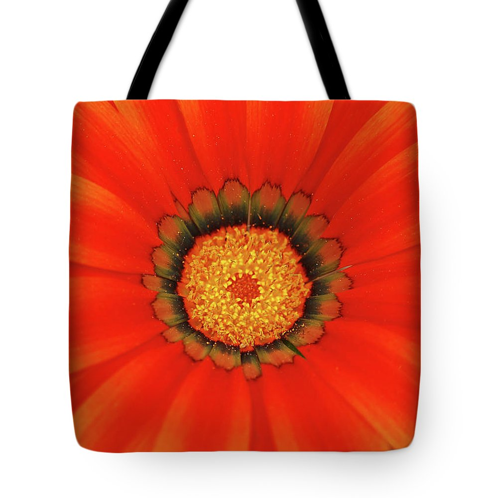 Daisy Tote Bag featuring the photograph The Beauty Of Orange by Lori Tambakis