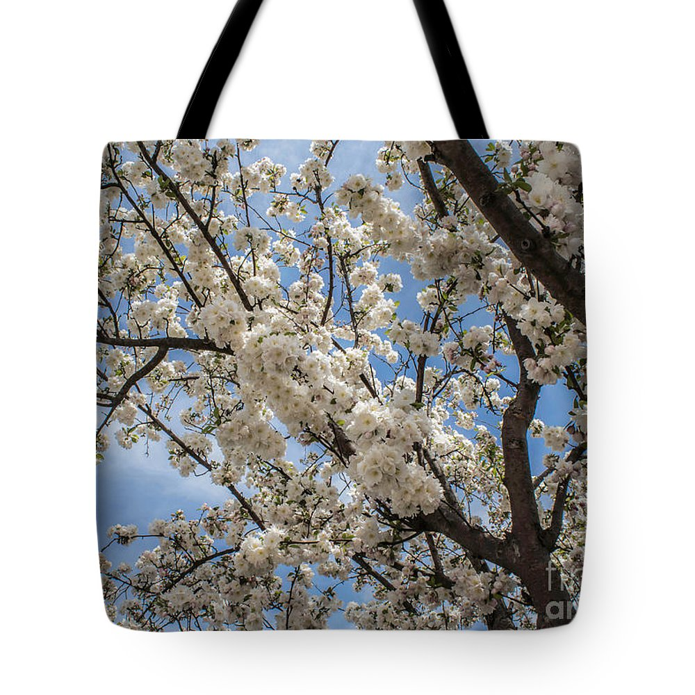 Blossom Tote Bag featuring the photograph The Bough by Arlene Carmel