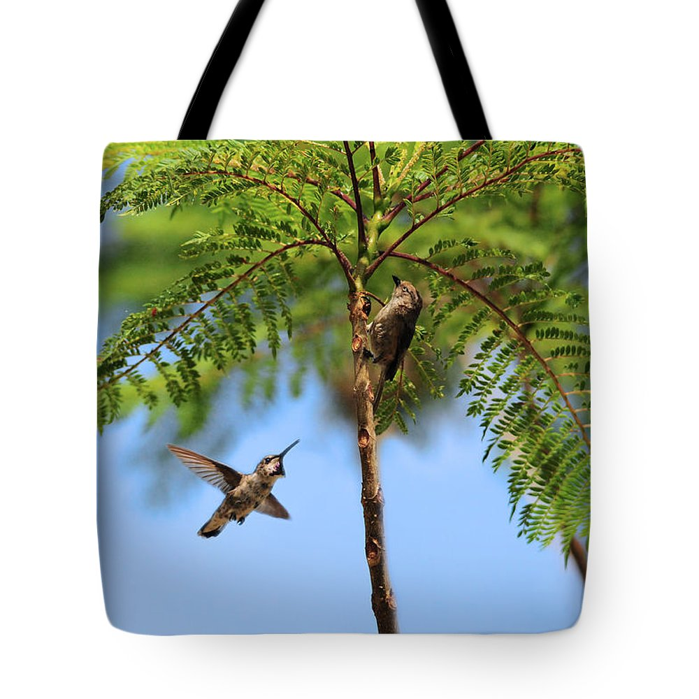 Challenge Tote Bag featuring the photograph The Challenge by Lynn Bauer
