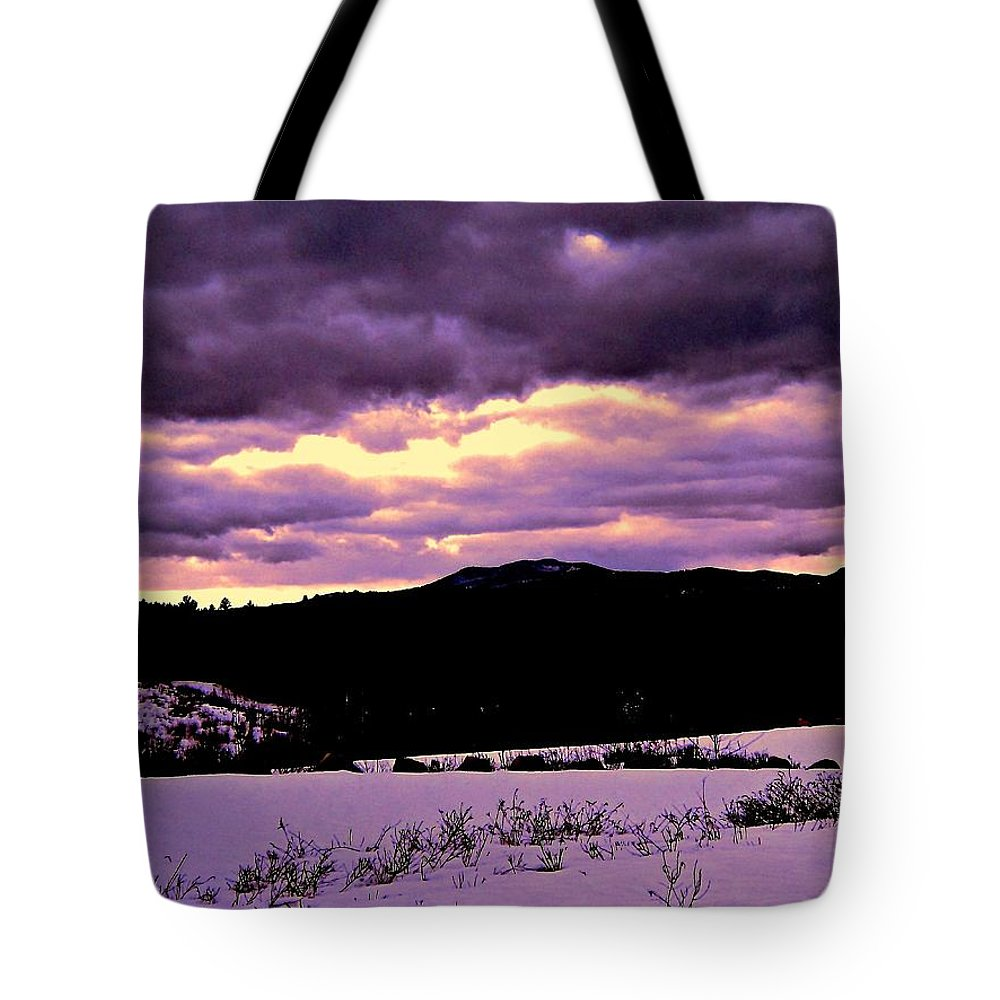 Tote Bag featuring the photograph The Color Purple by Elizabeth Tillar