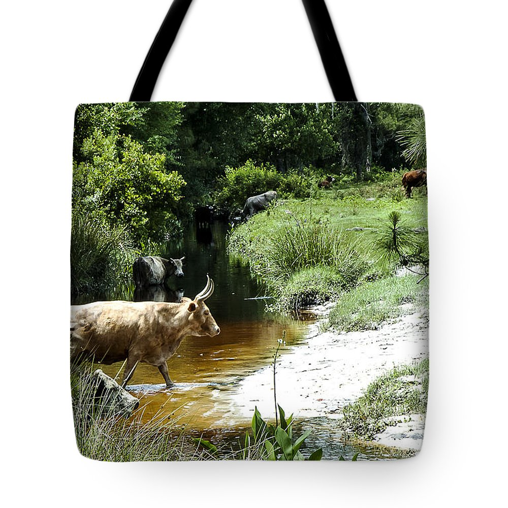 Landscape Tote Bag featuring the photograph The Crossing 2 by Norman Johnson