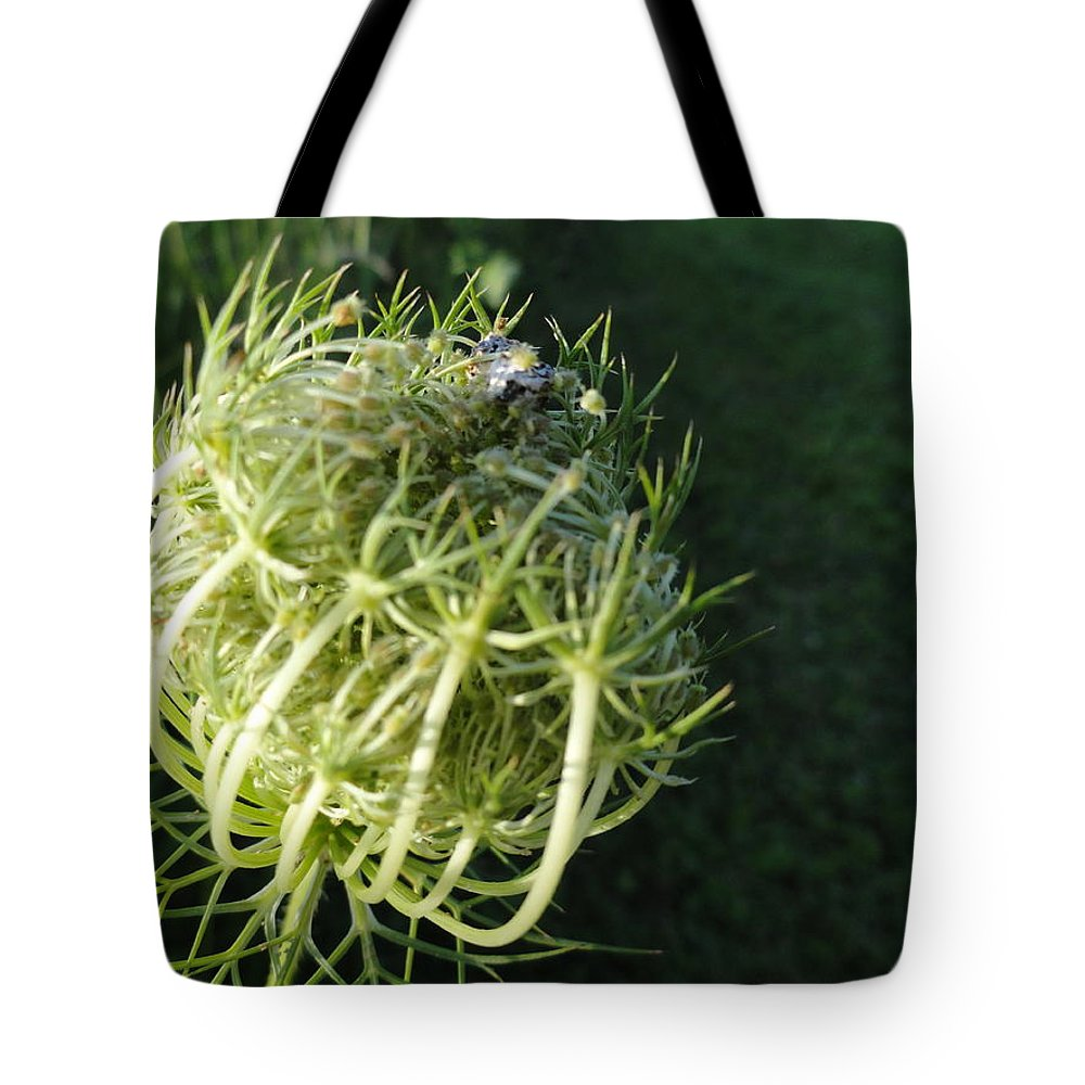 Tote Bag featuring the photograph The Queen Is Home by Trish Hale
