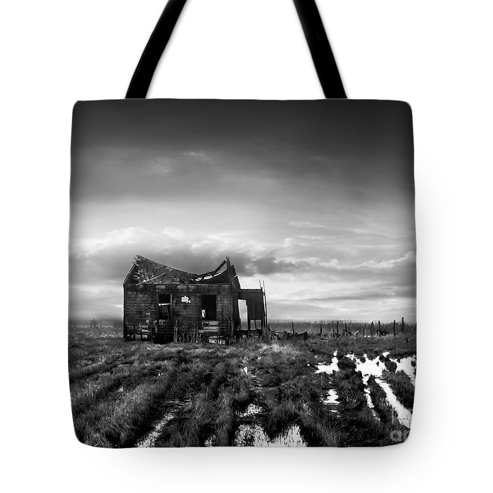 Architecture Tote Bag featuring the photograph The Shack by Dana DiPasquale