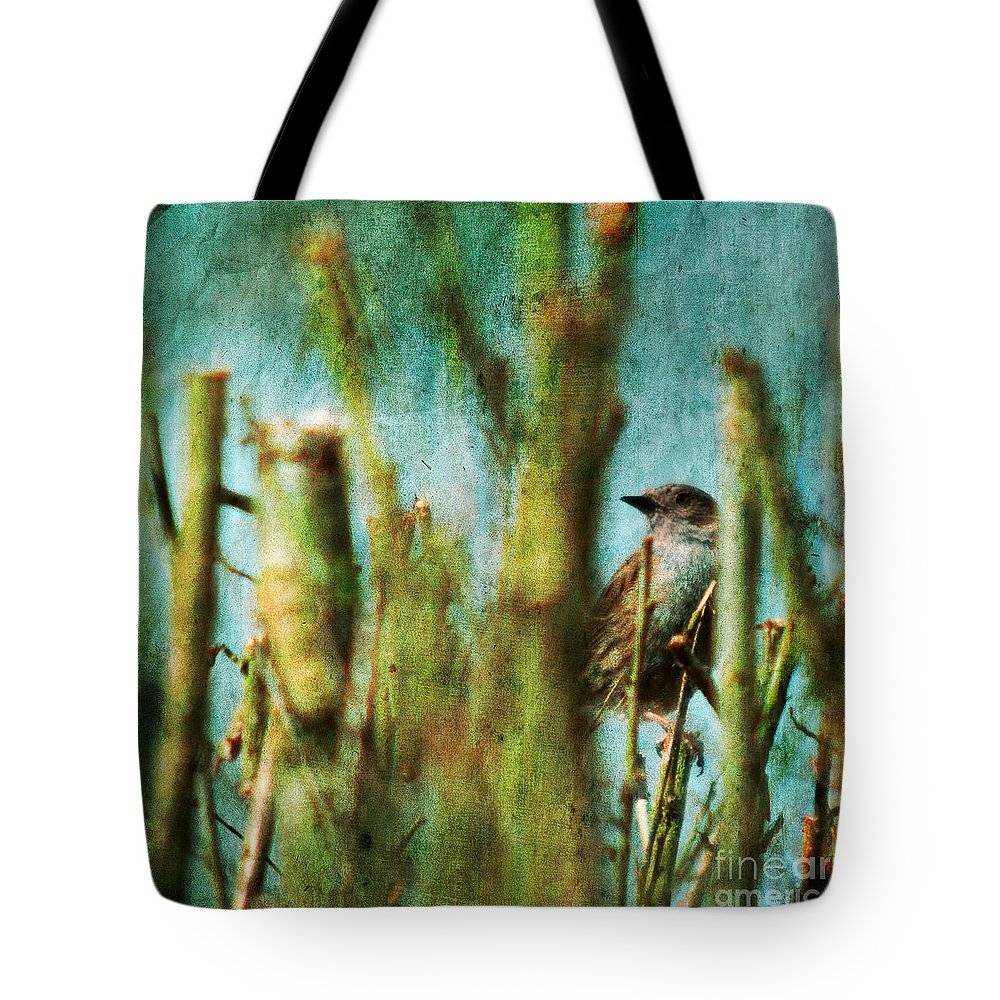Thrush Tote Bag featuring the photograph The Thrush by Angel Ciesniarska