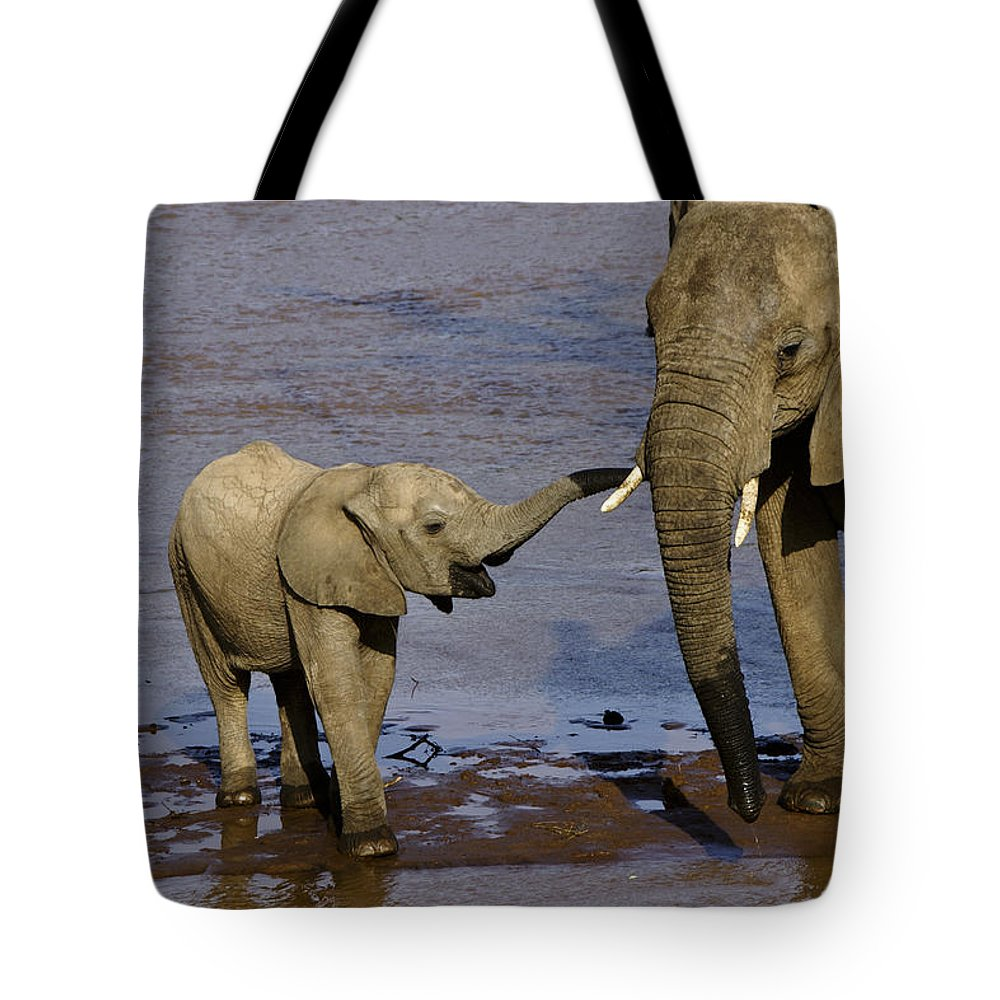 Africa Tote Bag featuring the photograph This Is My Mother by Michele Burgess