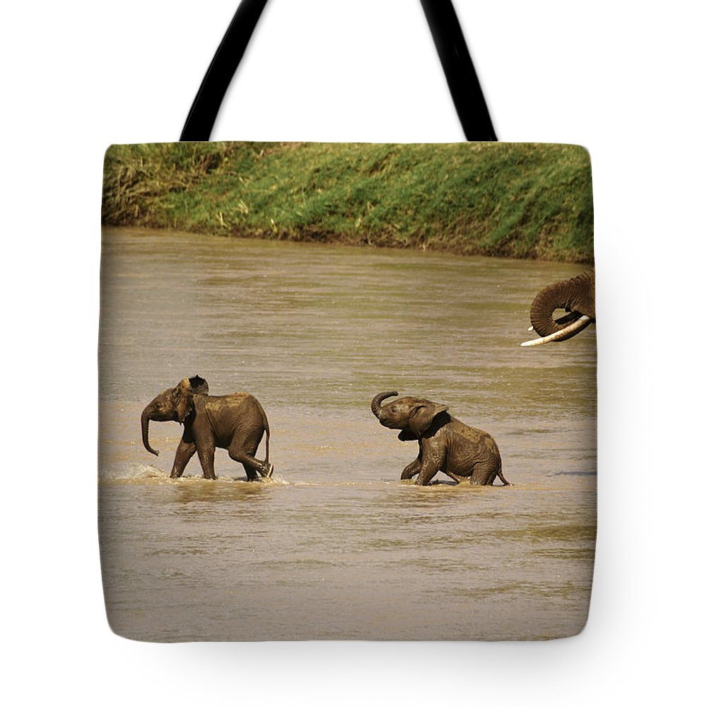 Africa Tote Bag featuring the photograph Tiny Elephants by Michele Burgess