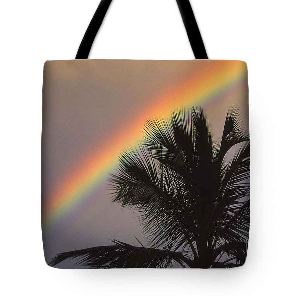 Afternoon Tote Bag featuring the photograph Top Of A Palm Tree by Ron Dahlquist - Printscapes