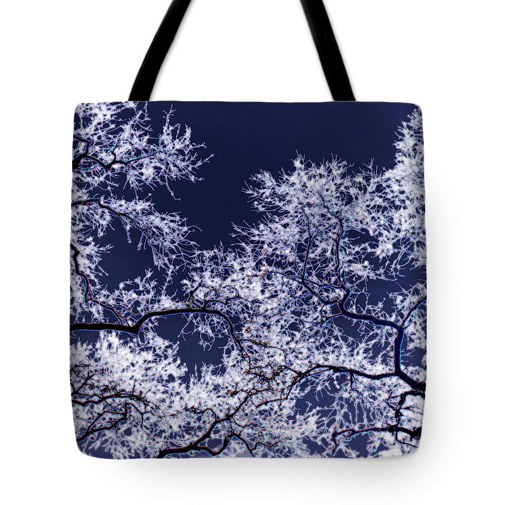 Tree Tote Bag featuring the photograph Tree Fantasy 17 by Lee Santa