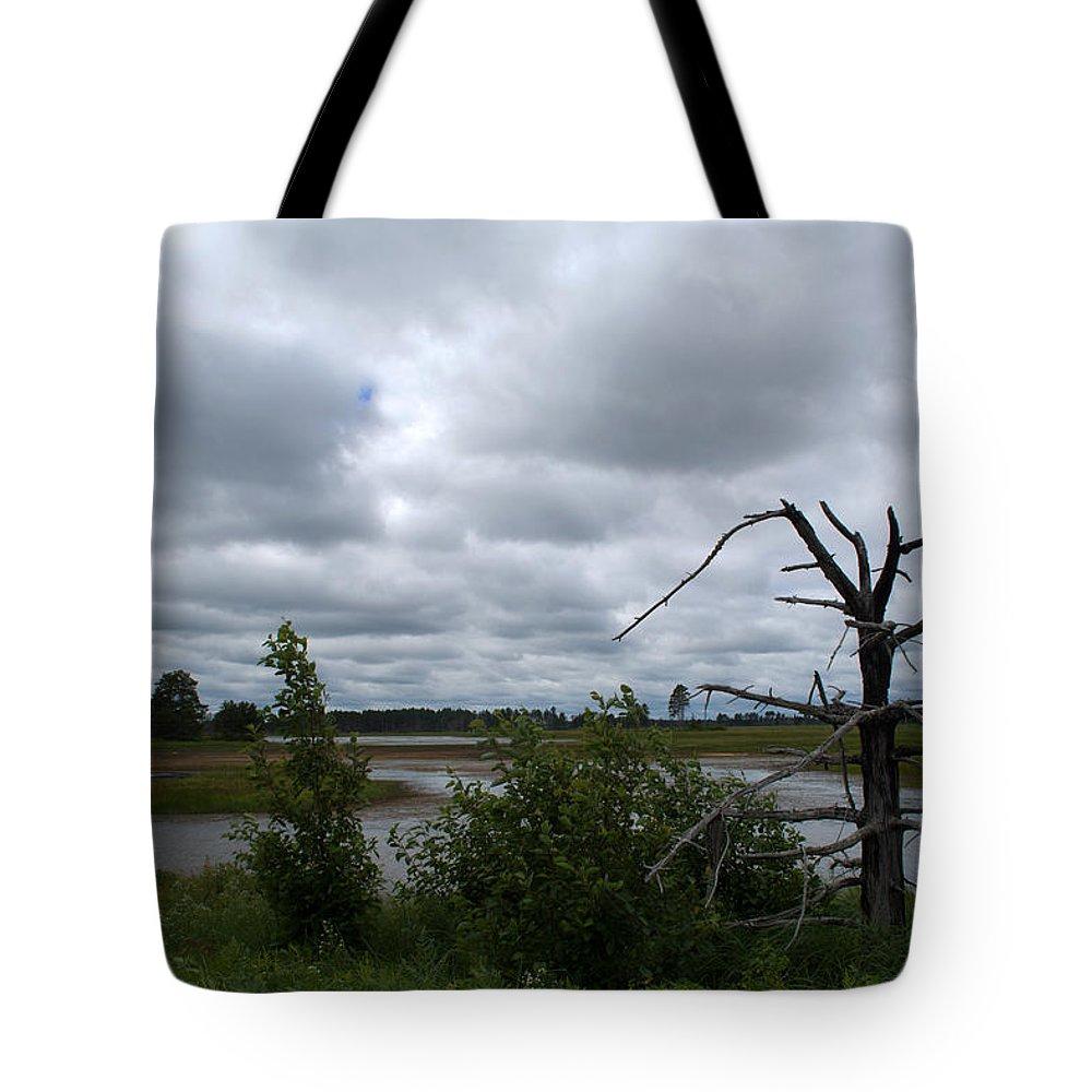 Seney National Wildlife Refuge Tote Bag featuring the photograph Tree In The Wetland by Linda Kerkau
